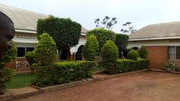 Executive two bedroom two toilet house for rent in ntinda at 650k