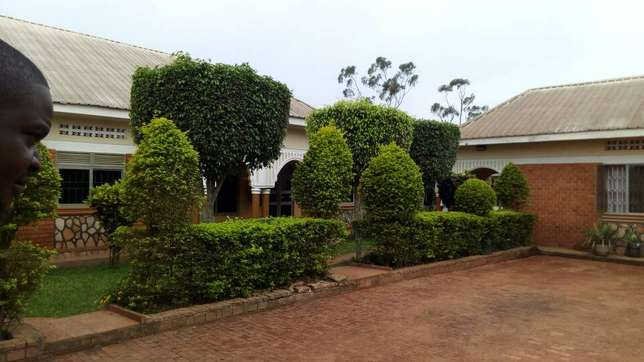 Executive two bedroom two toilet house for rent in ntinda at 650k Kampala - image 1