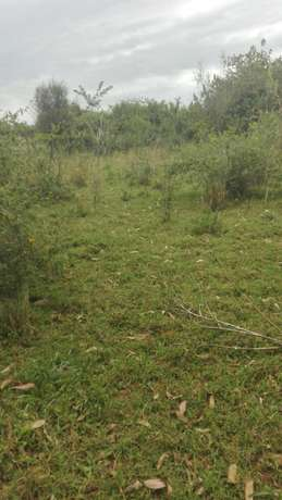 50*100 prime plots for sale in Murang'a county. Muranga Town - image 4