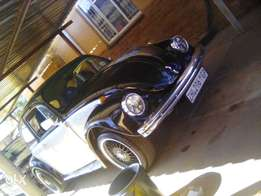 Vw beetle for sale. Swops will be considerd