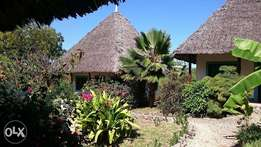 Diani beach near Congo river 1 acre freehold property with 7 bungalows