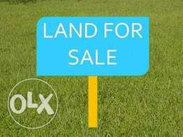 2&half plot of Land for sell at ohia-okporo Rumuadi in OgbogoroTown,