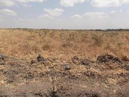 0.7 Acre Plot at Fourways Junction
