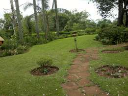 Hot investment property in Tzaneen (A must have!)