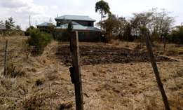 1/8 of an acre for sale at Rongai