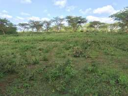 land for sell in kenol