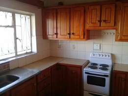Bachelor flat to rent in cbd