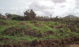 Lands at Royal Flourish Park Eluju Bogije now available for only N5m.