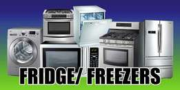 Fridge Repairs & Re-gassing (Rivonia)