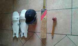 Nice cricket set