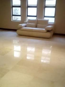 TILE RESTORATION, DEEP CLEANING AND SEALING ETC
