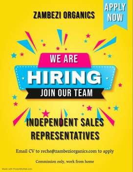 Independent Sales Representative