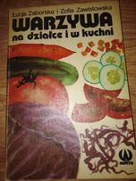 Warzywa na działce i w kuchni