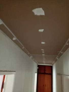 Ceiling & cornice Replacement and Maintenance