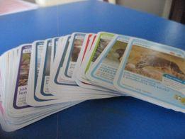 karty z Biedronki Super Zwierzaki