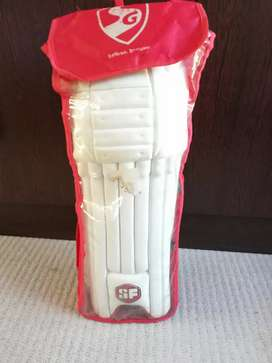 SF cricket pads