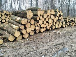 Drewno stosowe z przeznaczeniem na kominkowe buk, brzoza, dąb opałowe
