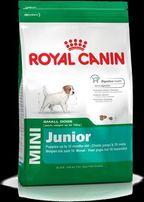 Royal Canin mini junior karma dla psów Białystok GREMI