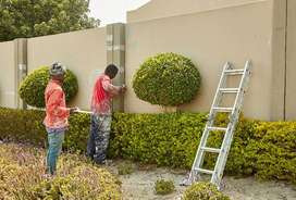 We paint houses, fill wall cracks or other home renovations