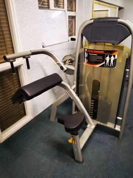 Impulse bicep and tricep machine