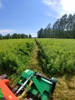 Mini traktorek (Koszenie , Glebogryzarka ) Prace ogrodowe