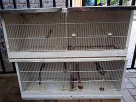 Double Canary/Finch Breeder Cages (2 available)