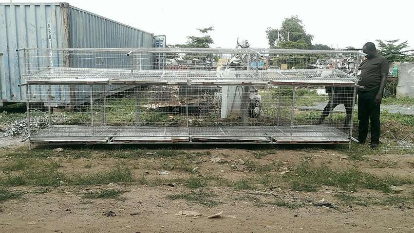Birds battery cage three in one for layer, broiler and turkey 0