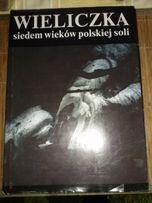 Wieliczka siedem wieków polskiej soli