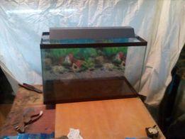 продажа и изготовление аквариумов, ремонт аквариумов