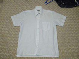 Koszula biała (37/38)
