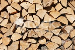 Продам дрова колотые дубовые и чурки очень дешево.