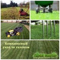 Уход за садом и газоном. Авто полив . Рулоный и сееные газоны.