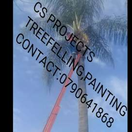Tree felling,garden services, painting, paving,rubble removal