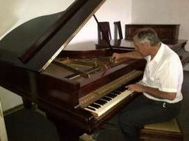 PIANO REFURBISHING, TUNING & TRANSPORT