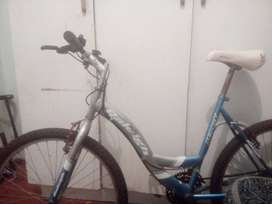 Raleigh M200X