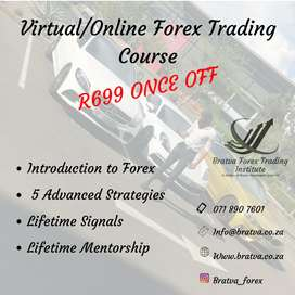 Basic + Advanced Forex and share Trading course