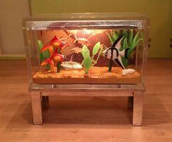 HIT! Pomarańczowy żwirek do akwarium 2-8 mm od 1 kg