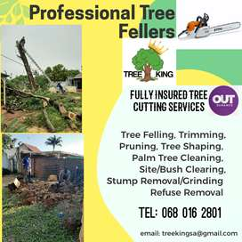 INSURED TREE CUTTING/FELLING. BOOMSLOPING