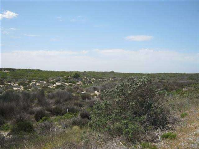 Farmland for sale in Hopefield western cape 0