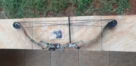 Compound bow for beginners