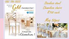 Stainless steel chameleon chairs