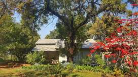 Two bed garden cottage avail for rent, 15 mins from PTA, N4 & Harties