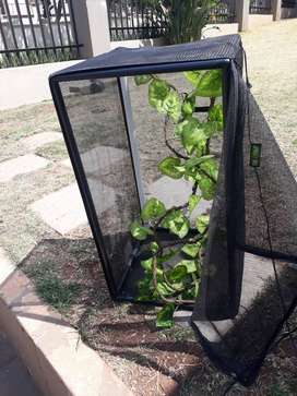 EUsed Exo Terra screen terrarium with vine plant