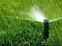 Image of Good Quality Instant Lawn Available With Free Fertilizer