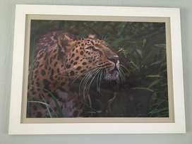 Leopard Good quality print framed with glass and board 101x76cm