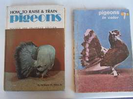 How to Raise and Train Pigeons Hardcover –by Allen, William H., Jr.