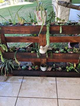 Vertical crate plant holder and succulents