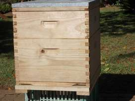 Treated 10 frame Langstroth Bee hive