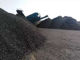 Business Opportunity in Coal