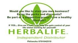 Herbalife Distributors g
